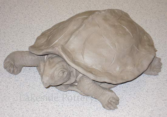 clay turtle front view