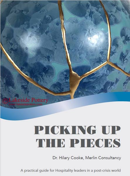 Picking Up The Pieces | Dr. Hilary Cooke - Merlin Consultancy